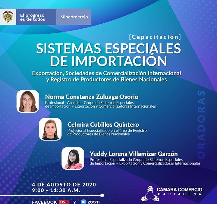Capacitación gratuita: Sistemas Especiales de Importación, Exportación, Sociedades de Comercialización Internacional y Registro de Productores de Bienes Nacionales