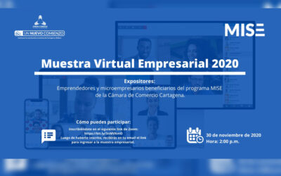 Muestra Virtual Empresarial MISE