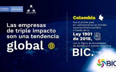 Sociedades de Beneficio e Interés Colectivo (BIC): redefiniendo el propósito de las empresas