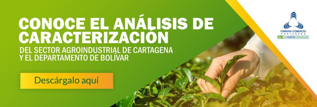 """Cámara de Comercio de Cartagena presenta datos del sector agroindustrial en su nuevo """"Análisis de Entornos Competitivos"""""""